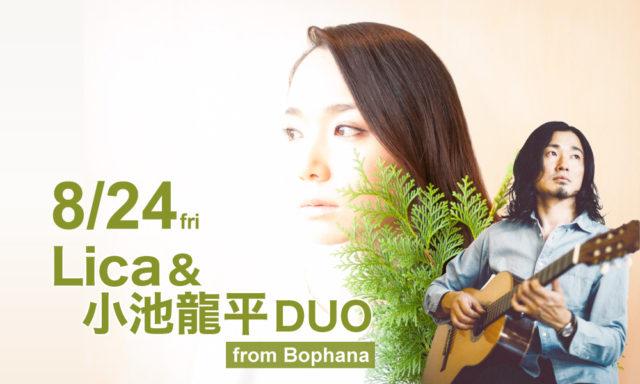 8月24日(金)Lica&小池龍平DUO(from Bophana) LIVE
